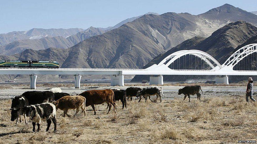 Rain line in Tibet