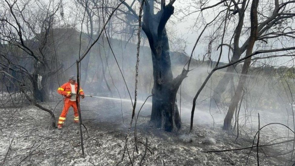 Firefighters during extinguishing works on a fire burning in the Scano di Montiferro comune