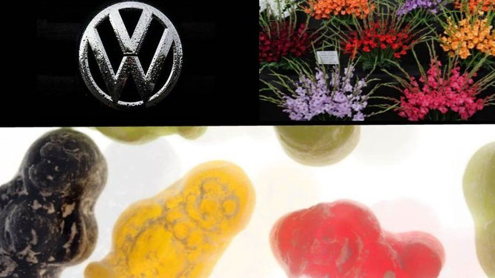 Clockwise: VW badge and Gladioli - copyright Getty Images. Jelly Babies copyright BBC