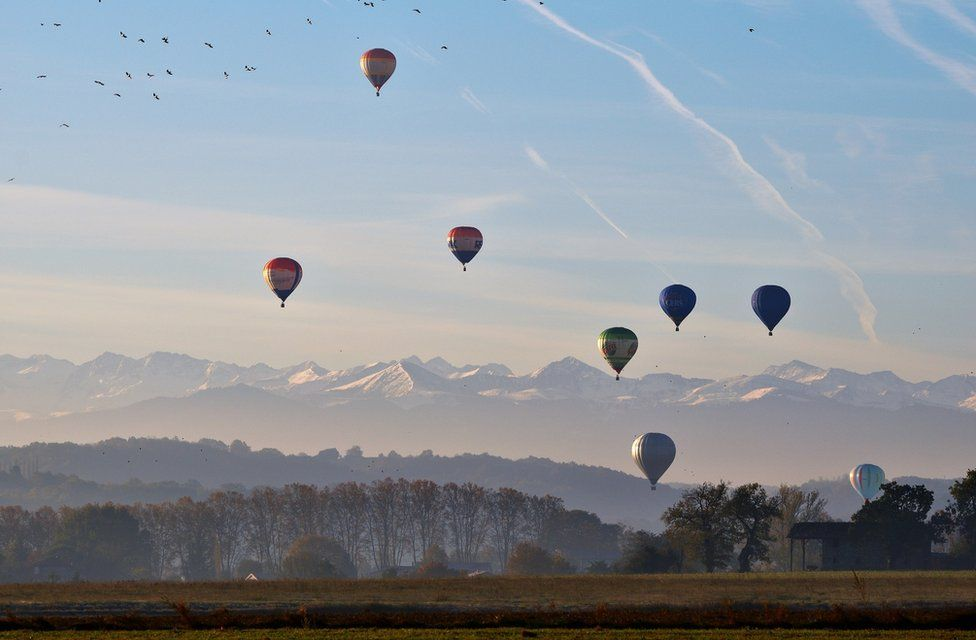 Hot-air balloons taking off