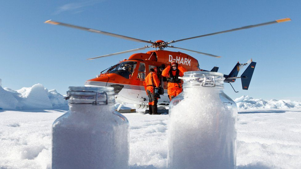 Samples of Arctic snow