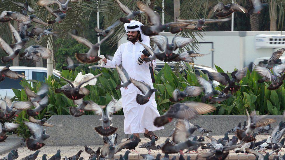 A man looks at pigeons at a market in Doha, Qatar