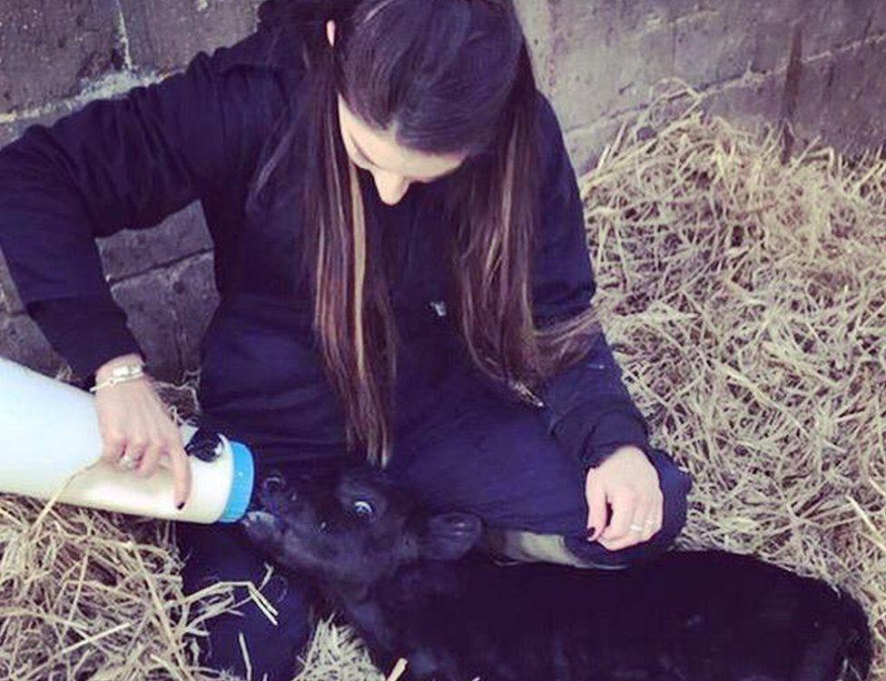 Abi feeding a calf
