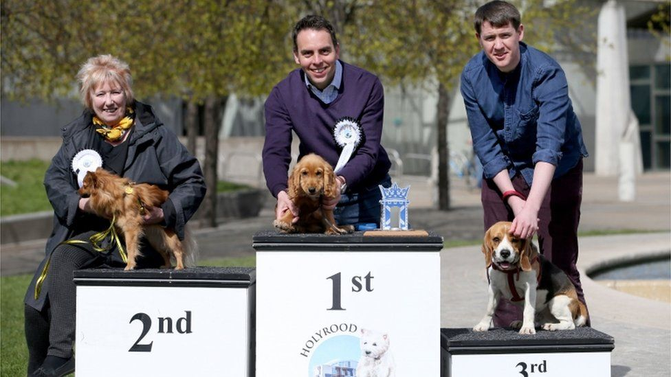 Dog of the Year winners