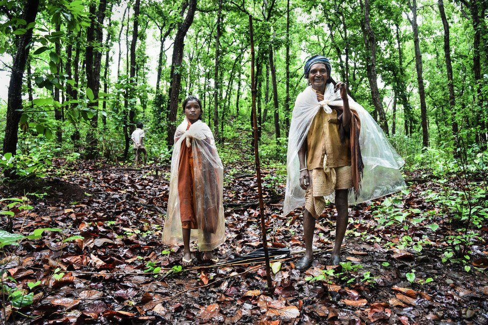 A member of the Baiga tribe crosses the forest with his two grandchildren.