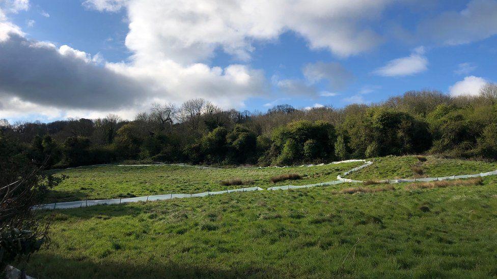 Tufa Field