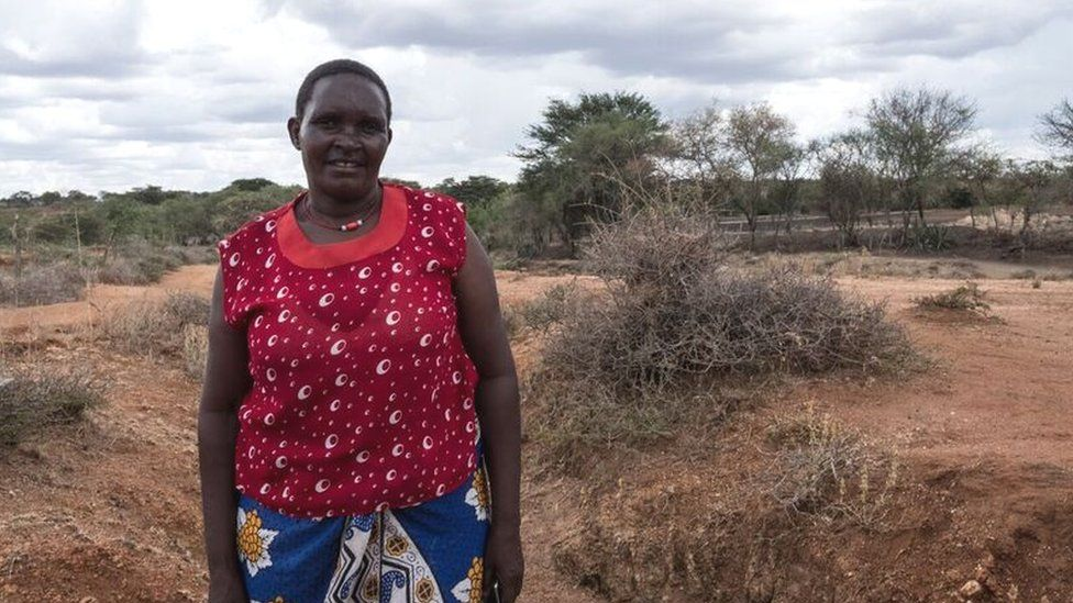 A Kenyan woman standing in a barren landscape with sparse trees