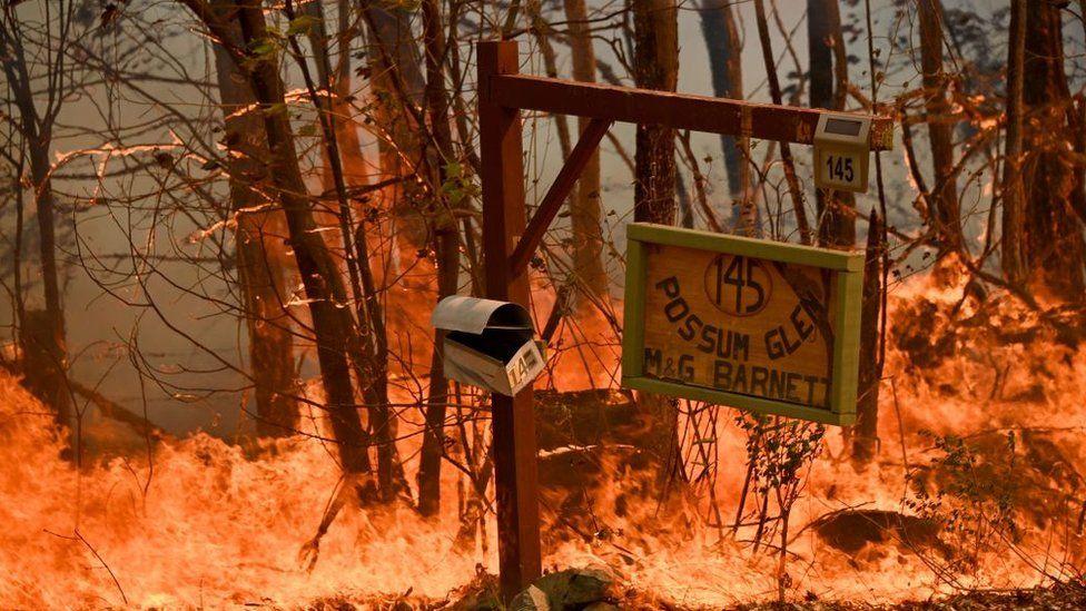 A bushfire burns outside a property near Taree, 350km north of Sydney on November 12