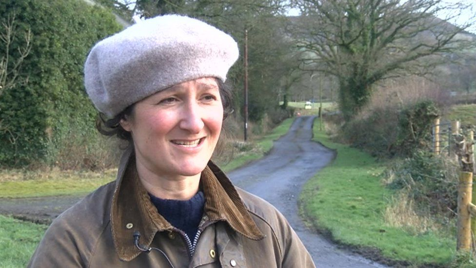 Young farmers losing route into industry, says Plaid Cymru