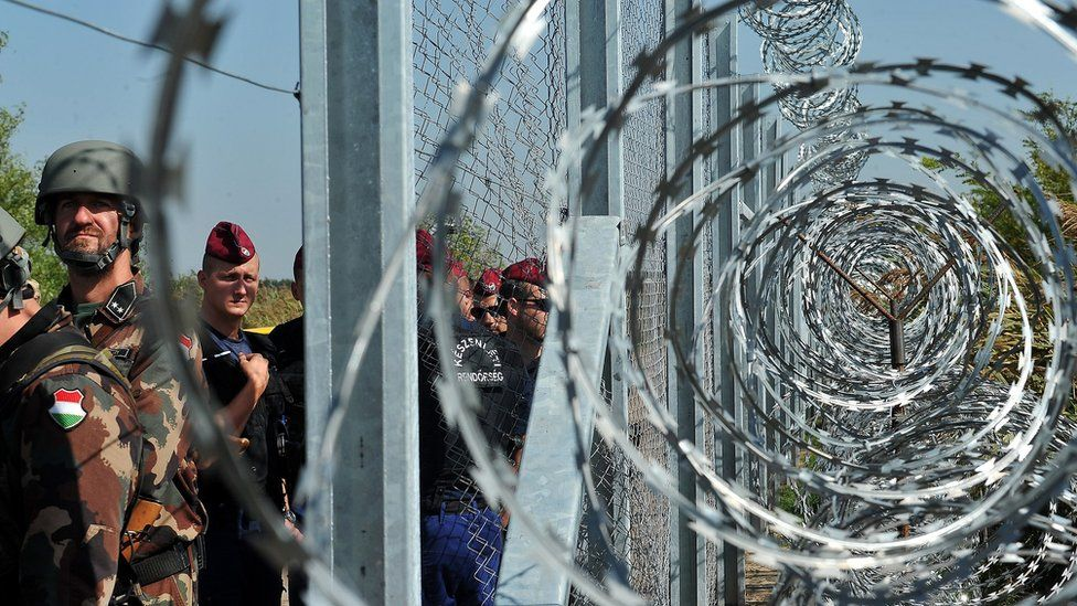 The fence on the Hungarian-Serbian border