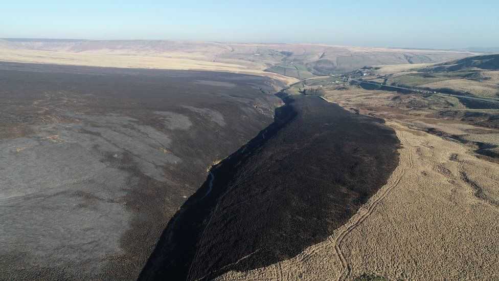 Damage casued by moorland fire