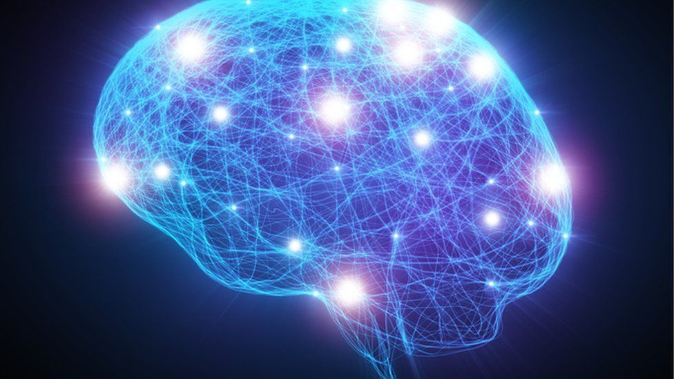 Computer representation of human brain