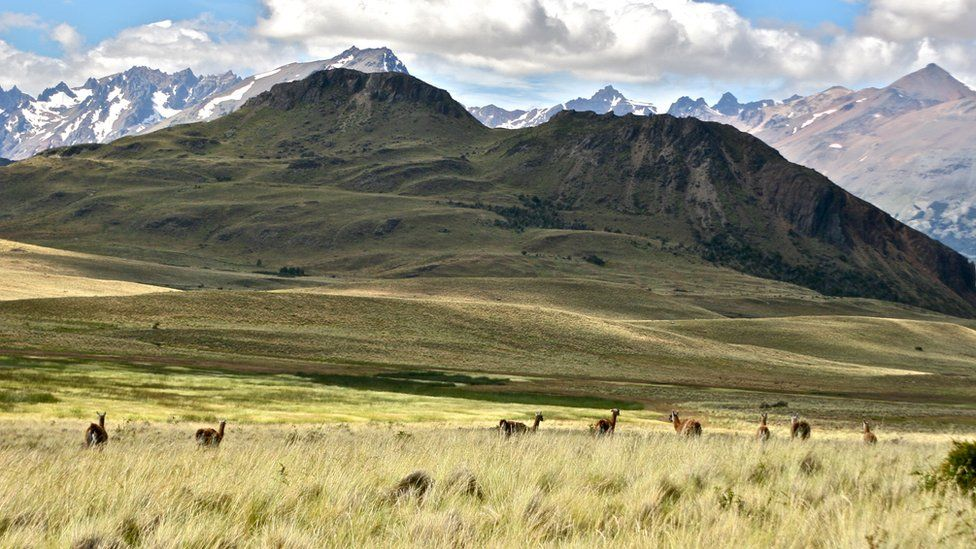 A view of Patagonia Park