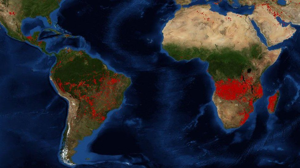 Map of fire South America and South Africa