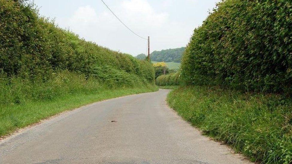 Hedgerows in Buckinghamshire