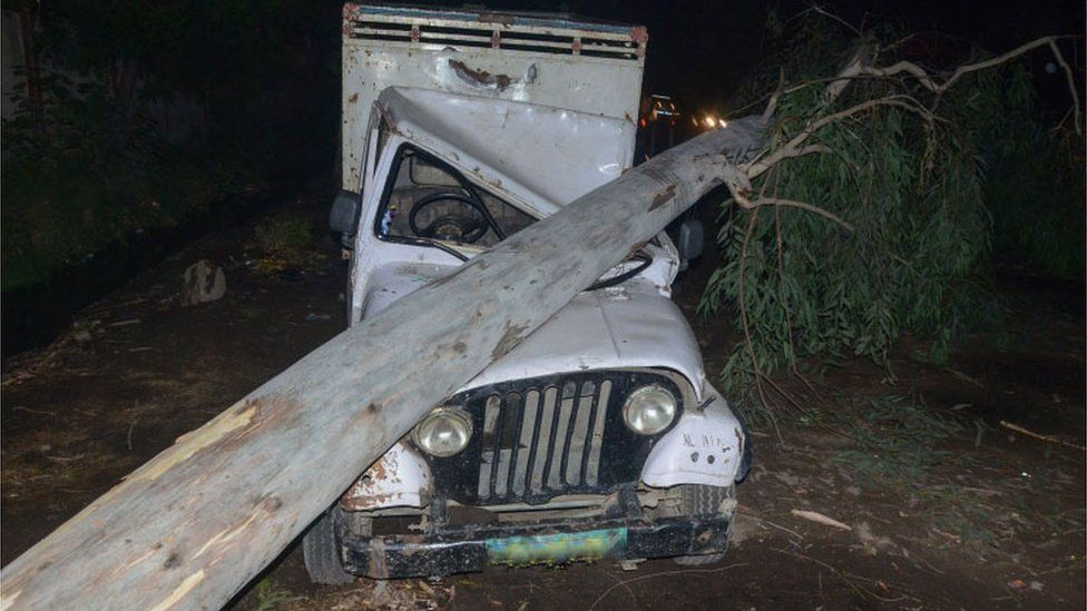 This photo taken on May 2, 2018 shows a tree that fell in high wind during a storm onto a vehicle in India's northern Uttar Pradesh state