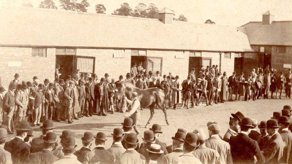 Gwerthiant ceffylau yn Amberley Court, tua 1920au
