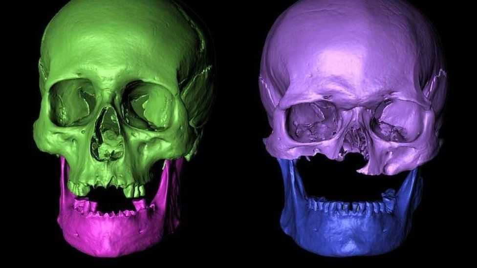 Visualisation of skulls found at Portmahomack