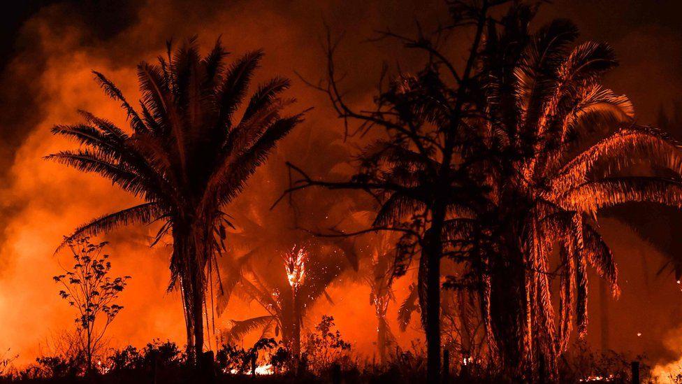 Fire burning along a highway, near Itaituba, Para state, Brazil, September 2019