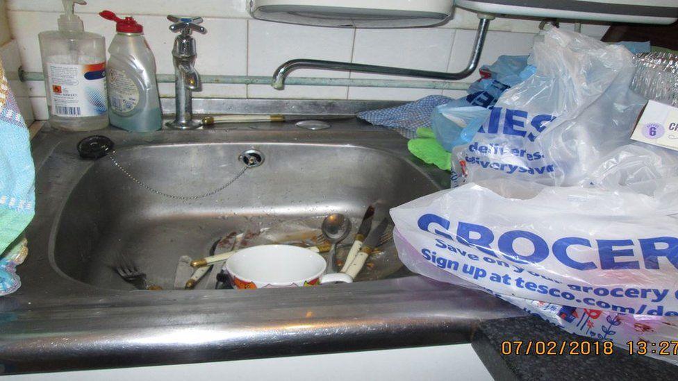 Catastrophe Cat Cafe's kitchen sink