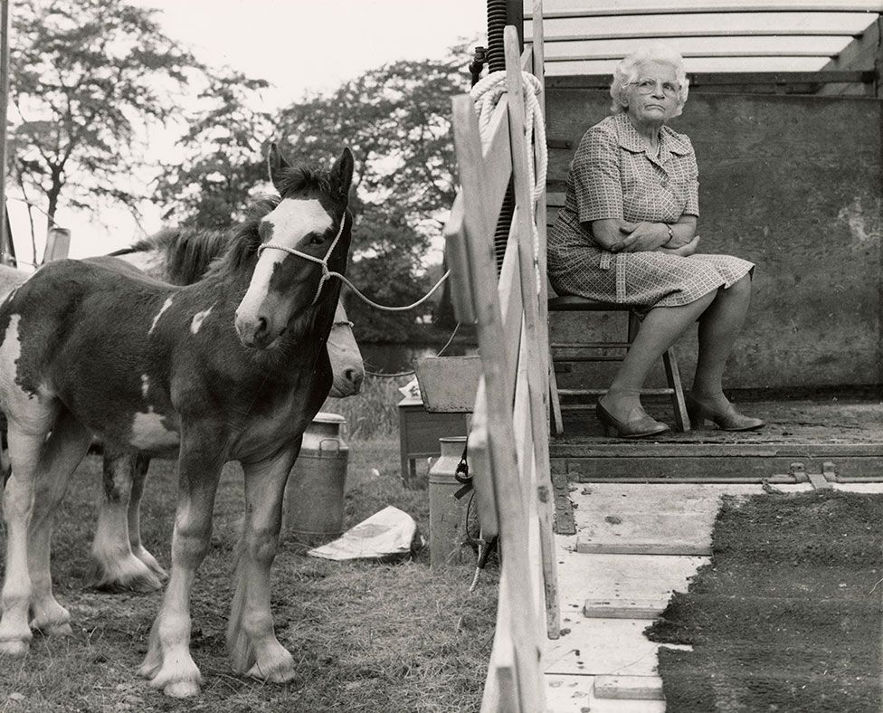 A woman sits on a chair and looks out of a horsebox trailer with a horse standing alongside it