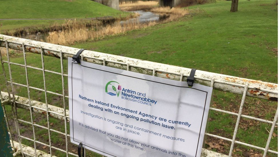 Dog owners have been advised to keep their animals out of the river