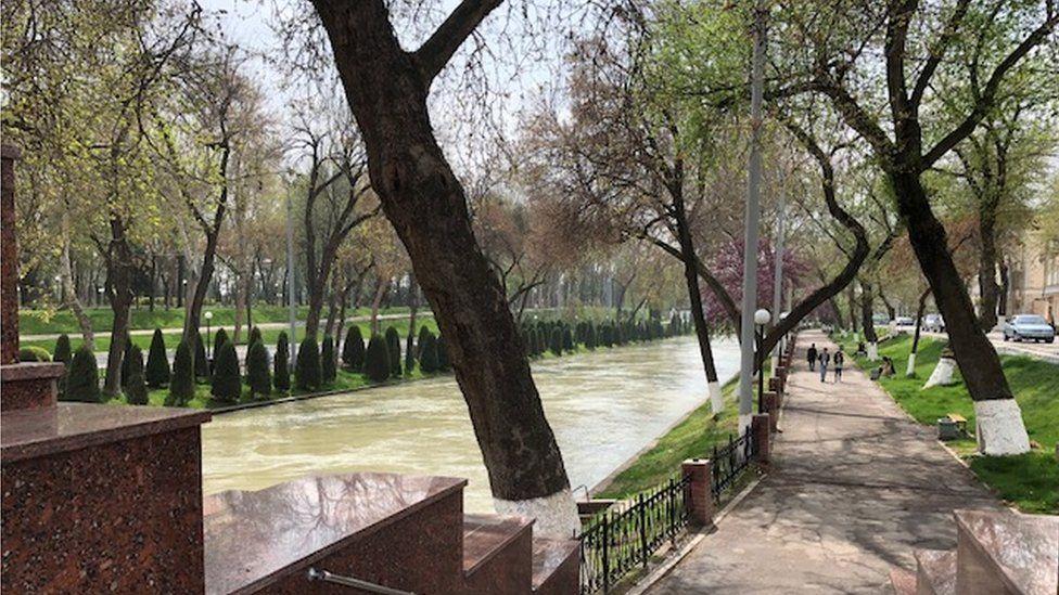 Spring along the River Ankhor in Tashkent