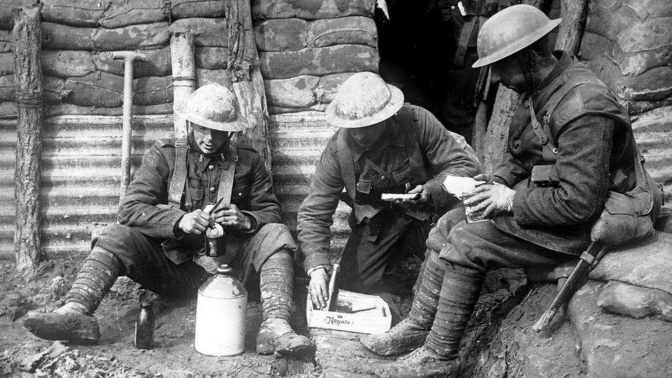 Окопы Первой мировой были идеальной питательной средой для