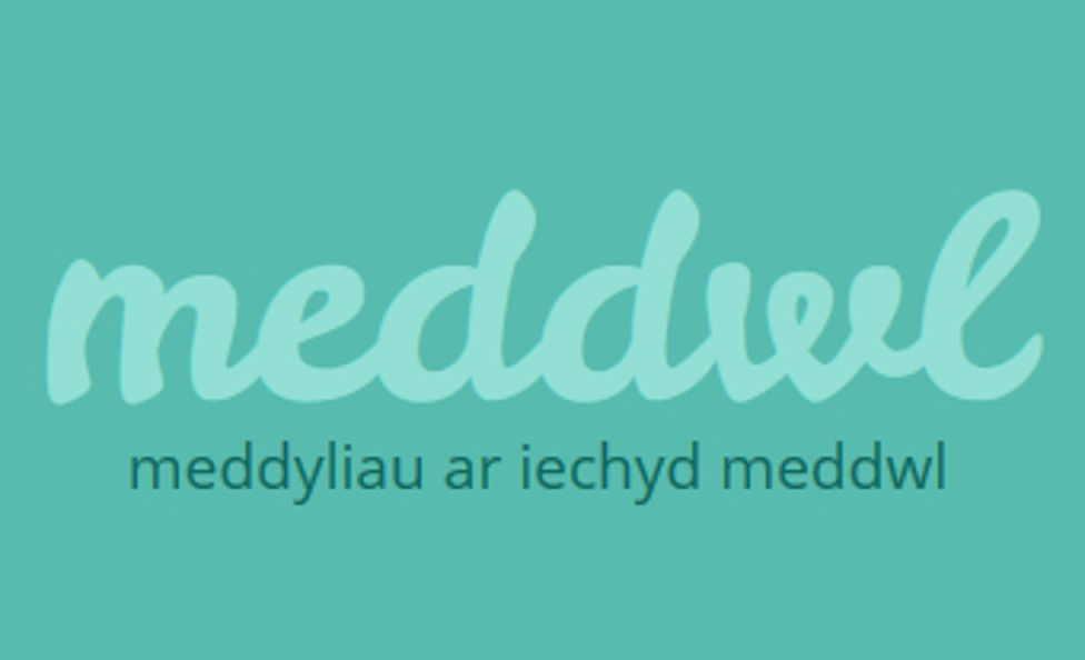 meddwl. org
