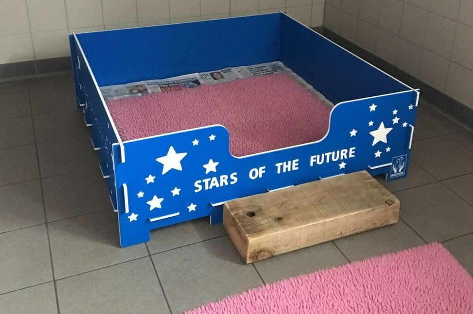 """The whelping box, where the puppies live with their mother, pictured with a slogan across the side that reads, """"Stars of the future""""."""