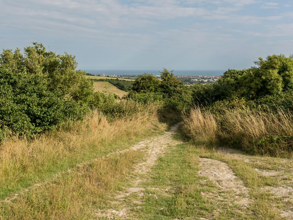A bridleway leading down Cissbury Ring on the South Downs