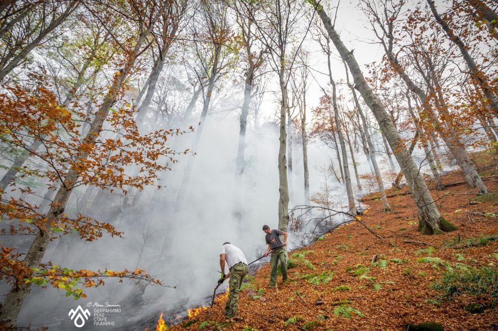 пожар на старој планини код топлог дола