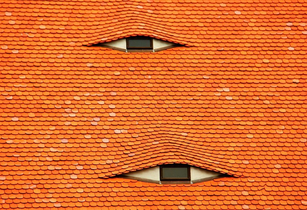 A slated roof with two windows looking like eyes