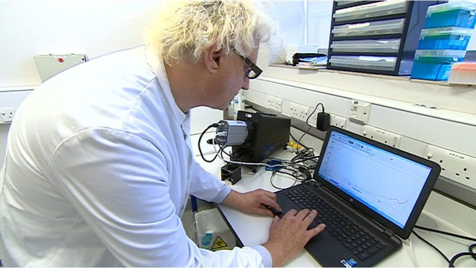 Scientist at laptop