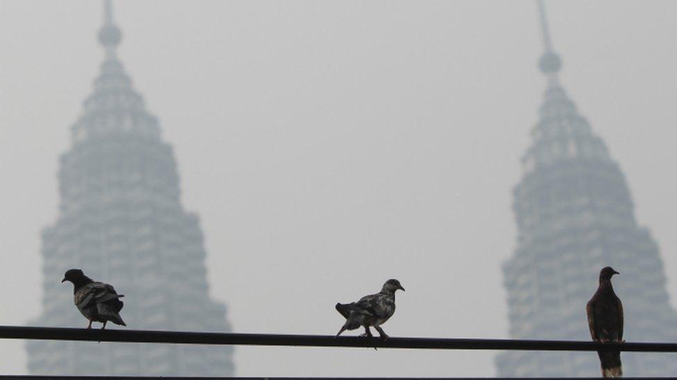 Malaysia's Petronas Twin Towers engulfed in smoke