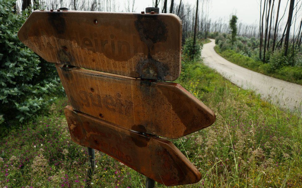 Charred road signs in Pedrógão Grande betray the traumatic events of a year ago