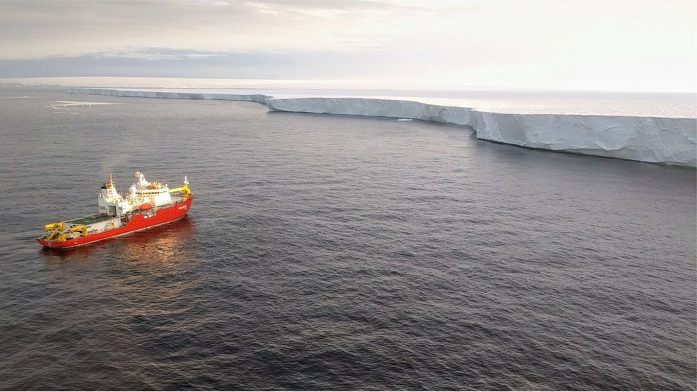 The glaciers' floating fronts join to form a single, continuous platform, or shelf