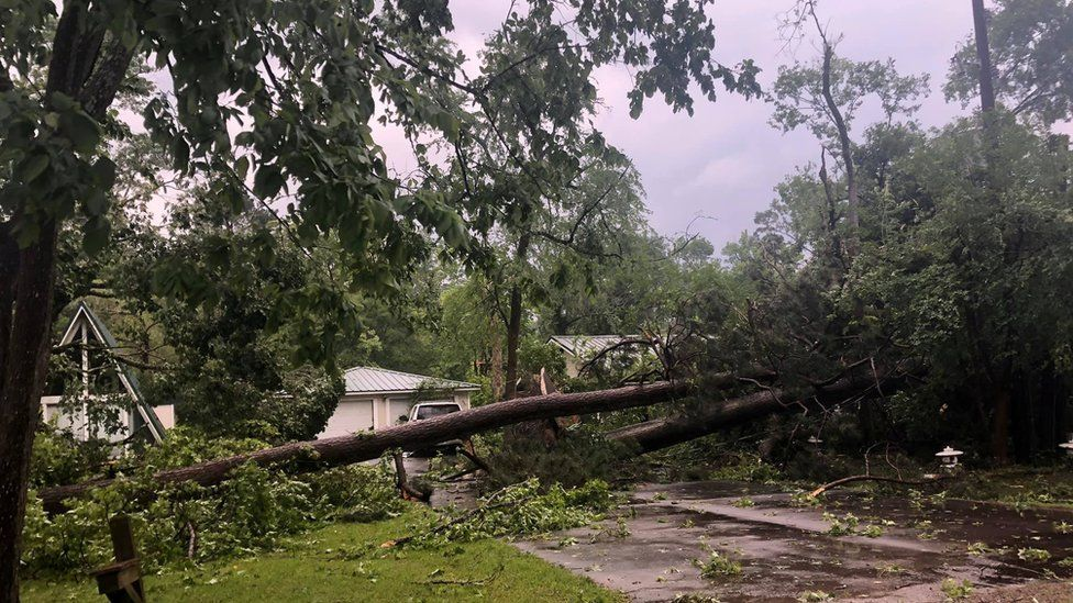 Trees fallen in an aftermath of severe storms and a tornado are seen in Onalaska, Texas