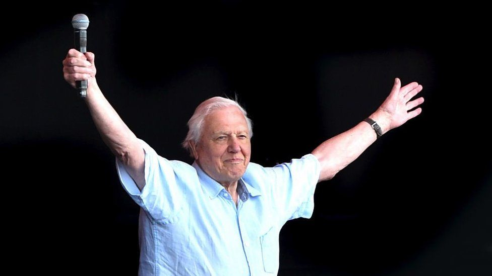 Sir David Attenborough on stage at Glastonbury