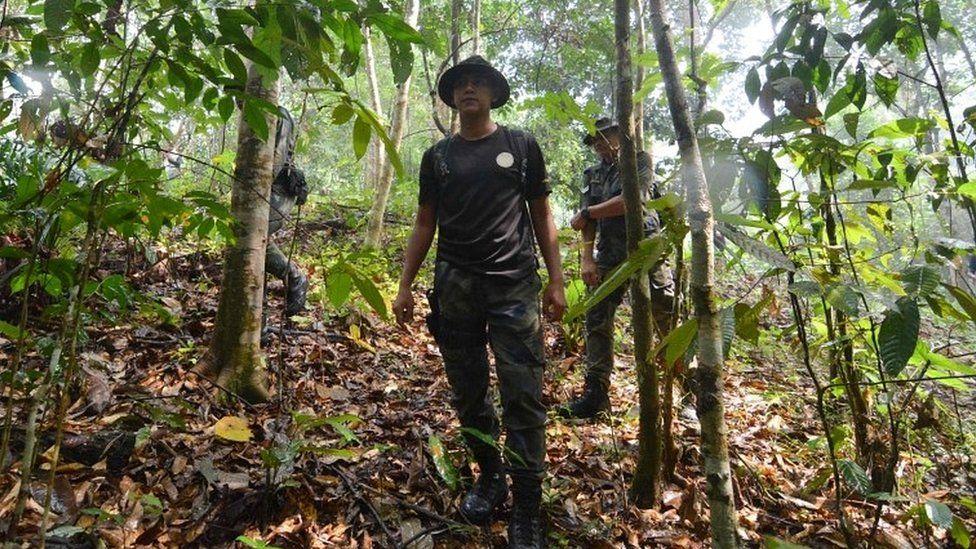 Searchers in jungle
