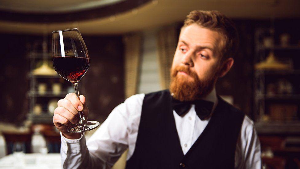 Por qué según la ciencia una mosca hembra (y no macho) puede arruinarte una copa de vino