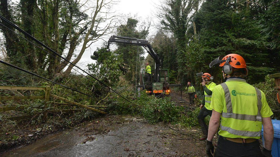 Workmen attempt to remove a tree that has fallen on to a road near Dundonald in County Down