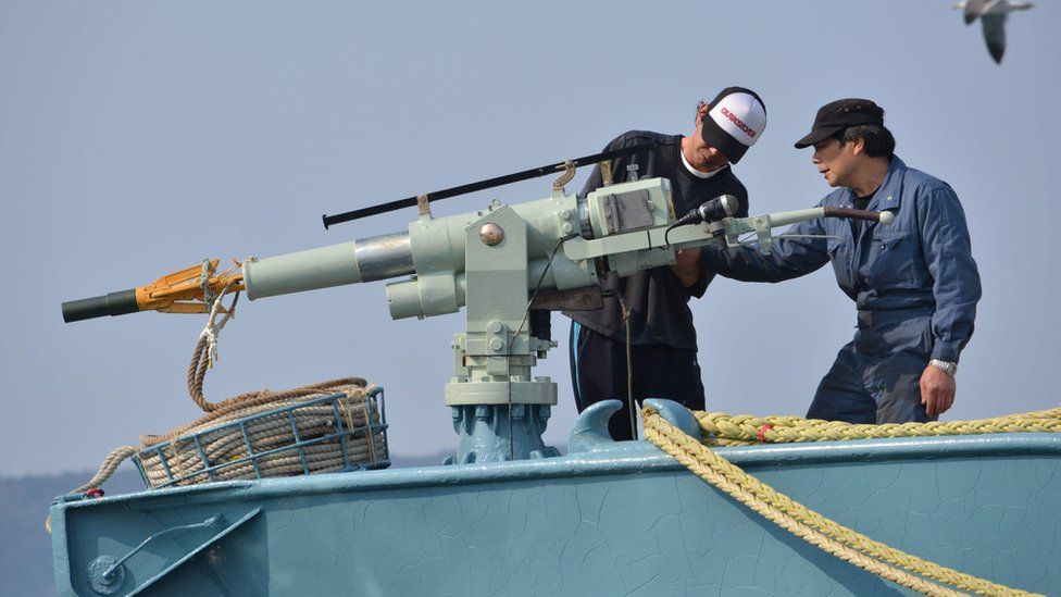 Crew members of a whaling ship check a harpoon before departure at Ayukawa port in Ishinomaki City, Japan. April 25, 2014