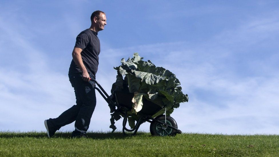 Craig Pearson with his winning giant cabbage