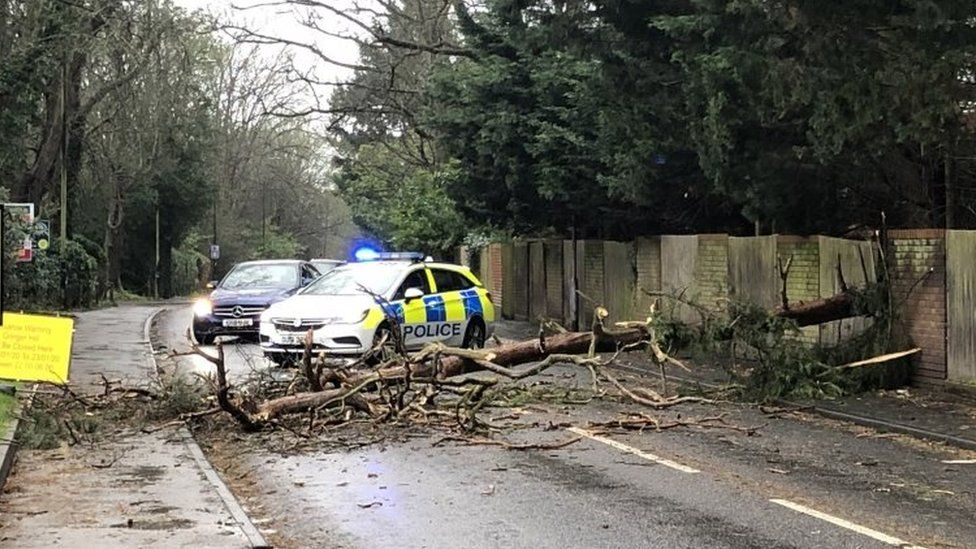 Police attending the scene of a fallen tree blocking Furze Platt Road, Maidenhead