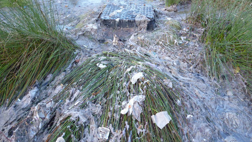 Raw sewage in Sutton Park