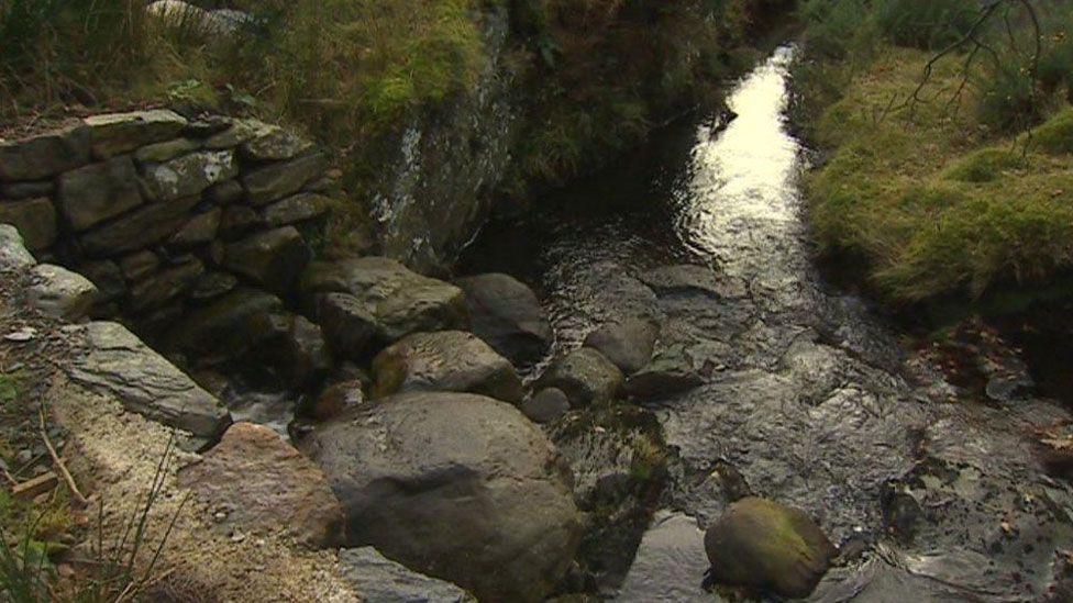 The River Berthen