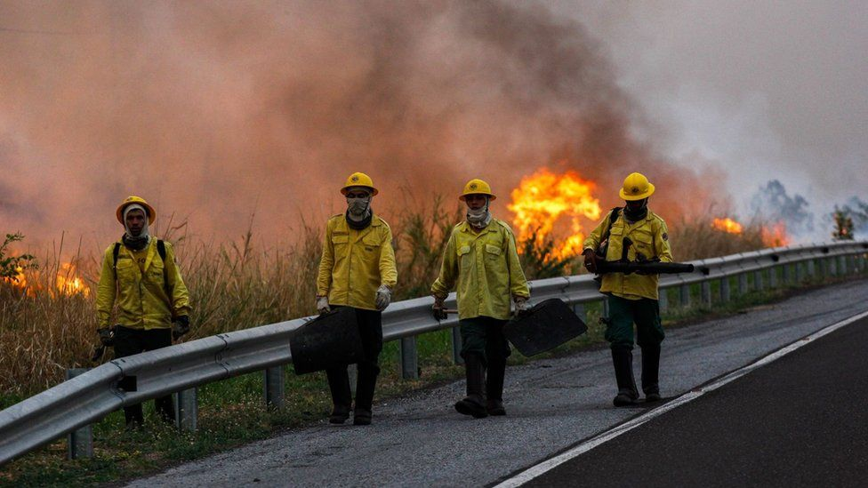 Firefighters walk next to a large forest fire in Pantanal