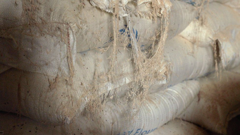 WFP food languishing in warehouse