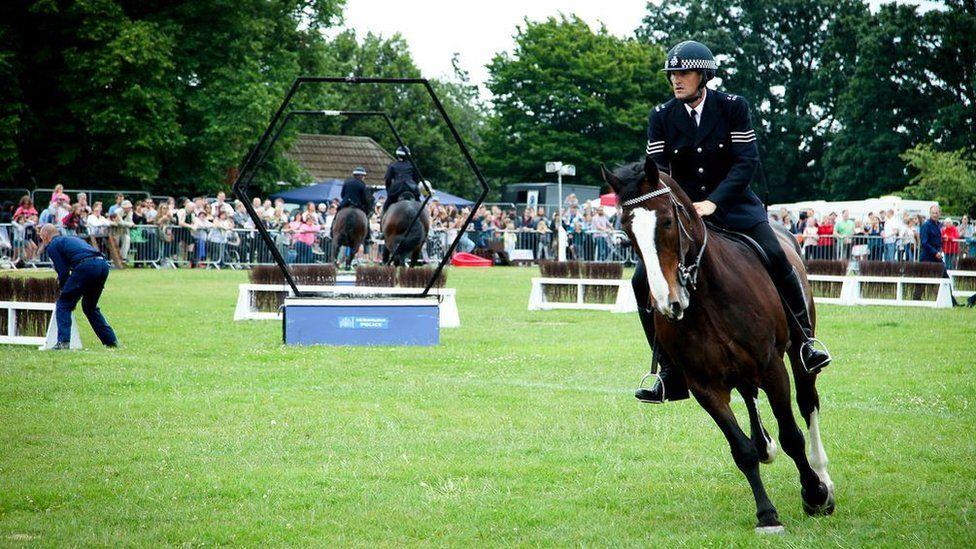 Met Police horse show